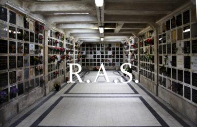 L'Exposition R.A.S, les Diplômés ESADHaR