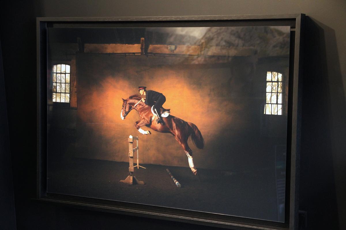 Yann Arthus-Bertrand chez YellowKorner