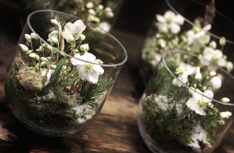Les Cadeaux Floraux d' Histoire de Fleurs